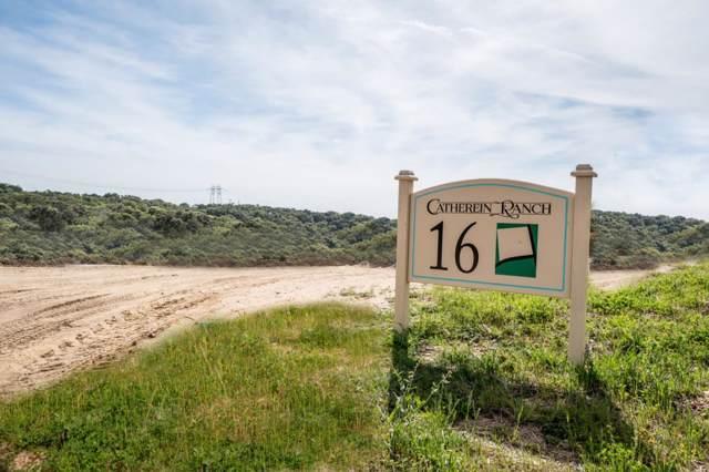 20500 Cathrein Ct, Salinas, CA 93907 (#ML81759528) :: Brett Jennings Real Estate Experts