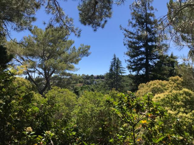 823 Upland Rd, Redwood City, CA 94062 (#ML81762115) :: Intero Real Estate
