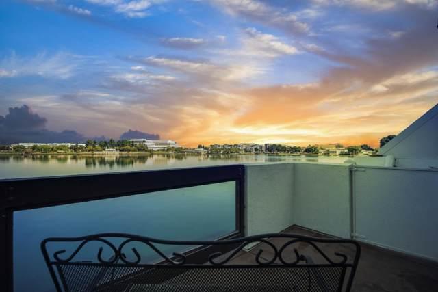 893 Balboa Ln, Foster City, CA 94404 (#ML81772237) :: Strock Real Estate