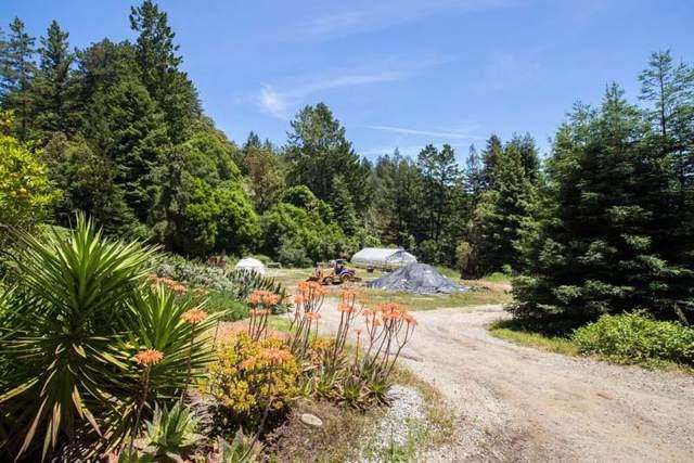 4001 Fern Flat Rd, Aptos, CA 95003 (#ML81775434) :: Strock Real Estate