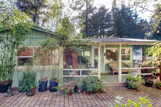 555 Gold Ave, Felton, CA 95018 (#ML81778087) :: The Sean Cooper Real Estate Group