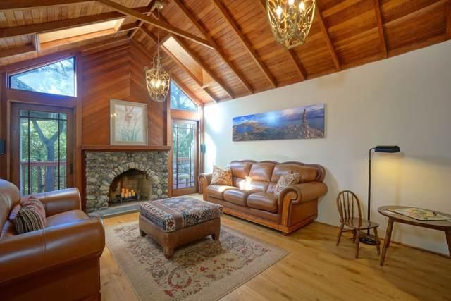 115 Otis Ave, Woodside, CA 94062 (#ML81779256) :: The Kulda Real Estate Group