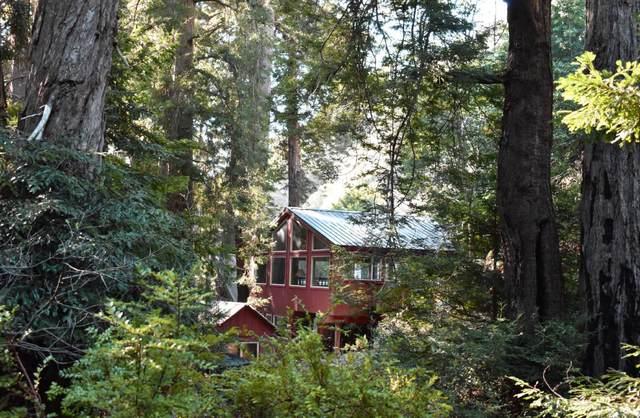 69331 Highway 1, Big Sur, CA 93920 (#ML81782601) :: Alex Brant Properties