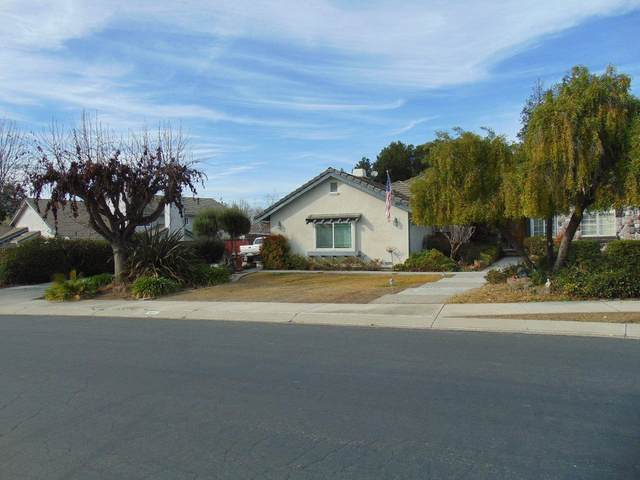347 Vista De Oro, Hollister, CA 95023 (#ML81784424) :: The Realty Society