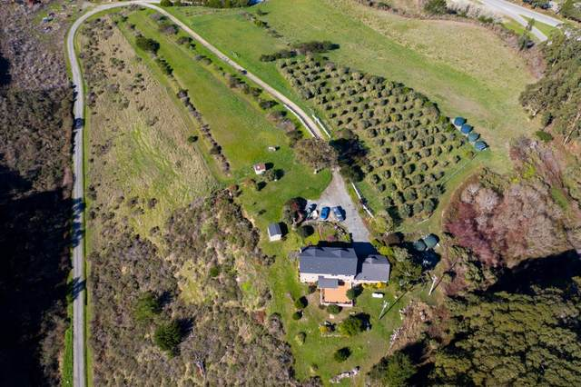 5675 Cloverdale Rd, Pescadero, CA 94060 (#ML81787358) :: Strock Real Estate