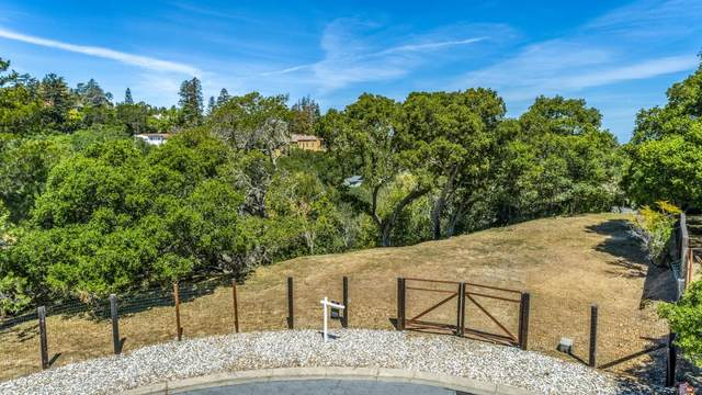 35 Victor Park Ln, Hillsborough, CA 94010 (#ML81787497) :: Alex Brant