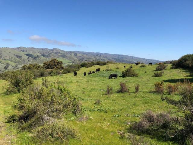 36000 E Carmel Valley Rd, Carmel Valley, CA 93924 (#ML81788210) :: Strock Real Estate