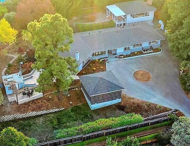 808 Amber Ln, Los Altos, CA 94024 (#ML81788242) :: Real Estate Experts