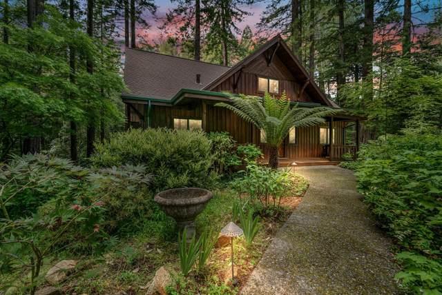 85 Pine Flat Rd, Santa Cruz, CA 95060 (#ML81791438) :: Alex Brant Properties