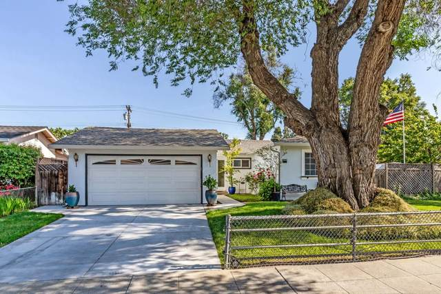295 Grey Ghost Ave, San Jose, CA 95111 (#ML81794514) :: Strock Real Estate