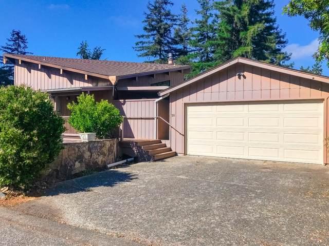 314 Tanner Heights Dr, Santa Cruz, CA 95060 (#ML81797773) :: Strock Real Estate