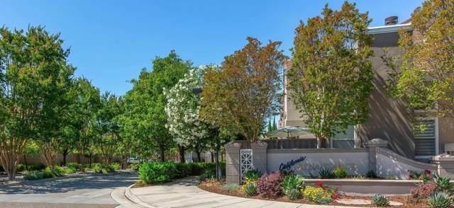 4201 Sophia Way, San Jose, CA 95134 (#ML81798336) :: Strock Real Estate