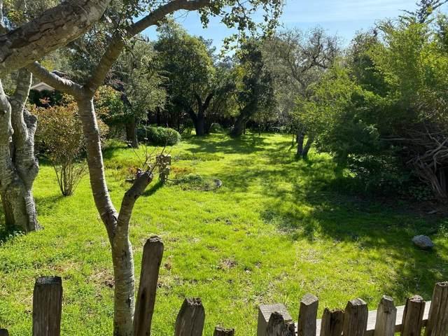 3072 Serra Ave, Carmel, CA 93923 (#ML81799150) :: Robert Balina   Synergize Realty