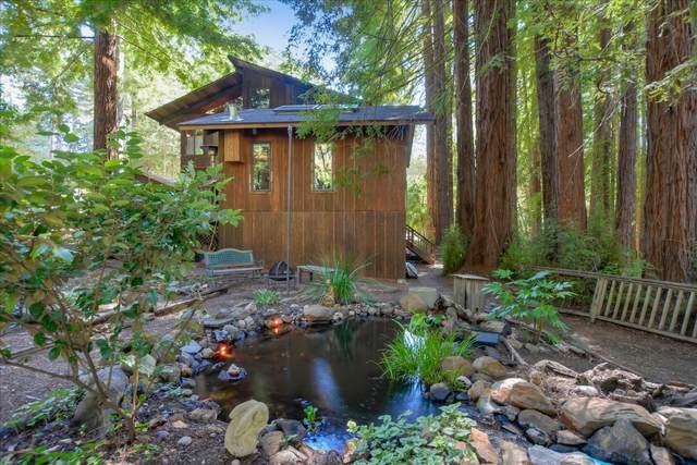 171 Emerald Forest Ln, Santa Cruz, CA 95060 (#ML81800452) :: Alex Brant Properties