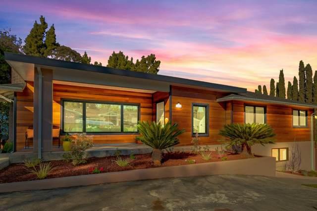 143 Cerrito Ave, Redwood City, CA 94061 (#ML81800881) :: The Sean Cooper Real Estate Group