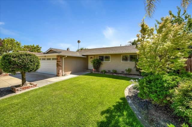 416 Roading Dr, San Jose, CA 95123 (#ML81800882) :: Alex Brant Properties