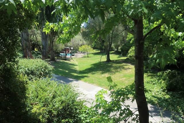5209 Shelter Creek Ln 5209, San Bruno, CA 94066 (#ML81803212) :: Strock Real Estate