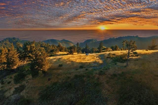 46720 Pfeiffer Ridge Rd, Big Sur, CA 93920 (#ML81804208) :: Alex Brant Properties