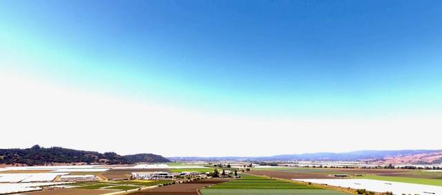 1901 San Juan Rd, Aromas, CA 95004 (#ML81805305) :: The Goss Real Estate Group, Keller Williams Bay Area Estates