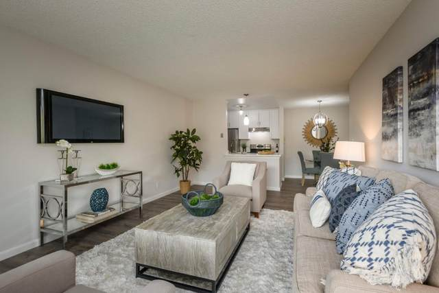 396 Imperial Way 213, Daly City, CA 94015 (#ML81808245) :: Real Estate Experts