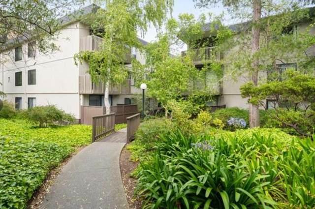 7325 Shelter Creek Ln, San Bruno, CA 94066 (#ML81808630) :: Intero Real Estate