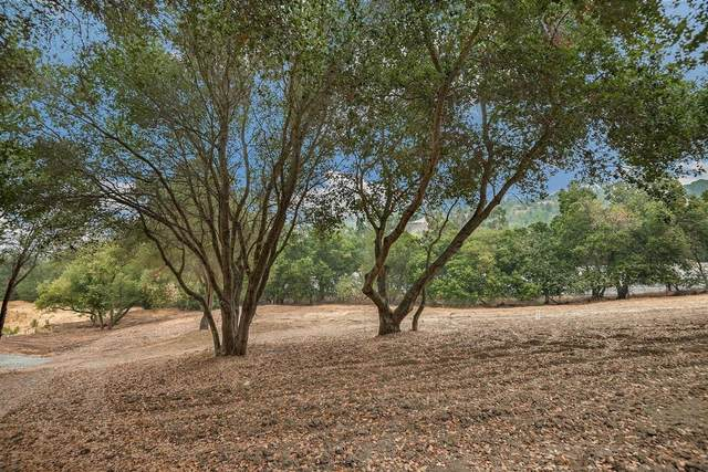 00 Maria Ct, Los Altos Hills, CA 94022 (#ML81809088) :: Intero Real Estate