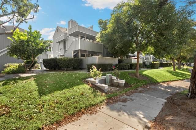 898 La Barbera Dr, San Jose, CA 95126 (#ML81817484) :: The Kulda Real Estate Group