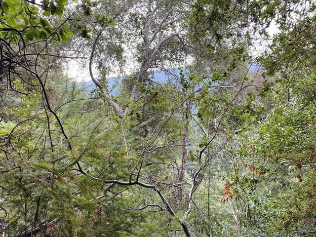 0 Hillary Heights, Boulder Creek, CA 95006 (#ML81820618) :: Olga Golovko