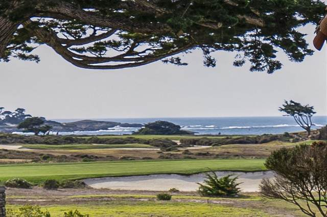 1029 Rodeo Rd, Pebble Beach, CA 93953 (#ML81821101) :: Olga Golovko