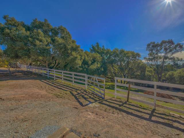 36 Crazy Horse Canyon Rd, Salinas, CA 93907 (#ML81823522) :: Intero Real Estate