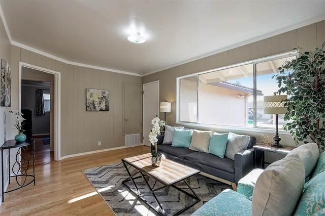 1623 York St, San Jose, CA 95124 (#ML81825982) :: The Goss Real Estate Group, Keller Williams Bay Area Estates