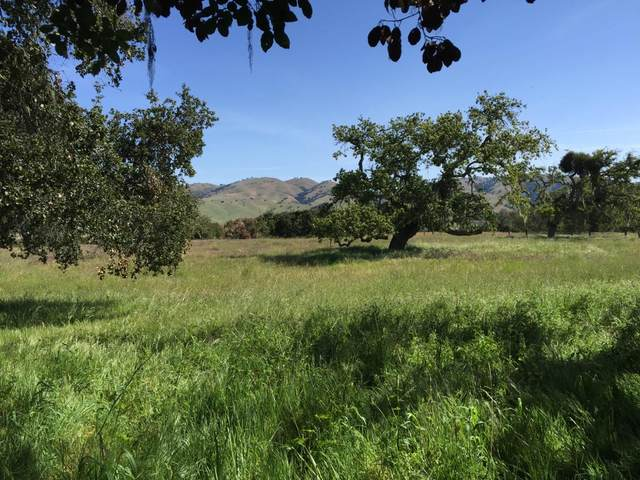33734 Old Country Rd, Carmel Valley, CA 93924 (#ML81830420) :: Alex Brant
