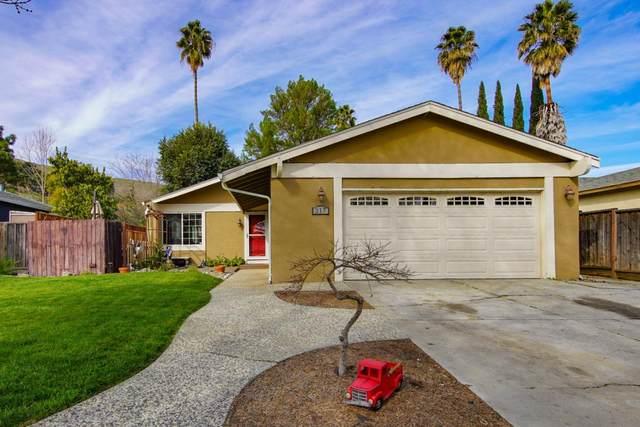 317 Beechvale Ct, San Jose, CA 95119 (#ML81831458) :: The Goss Real Estate Group, Keller Williams Bay Area Estates