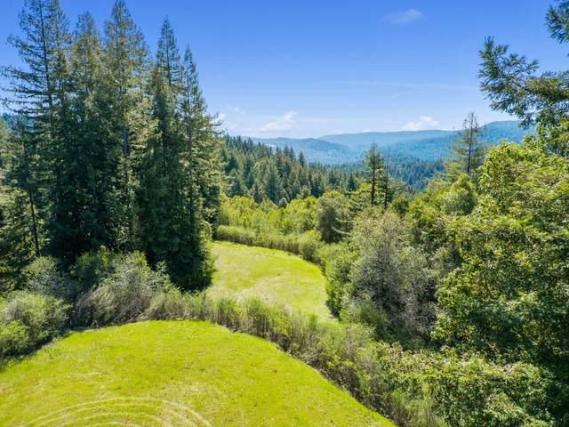 12101 Love Creek, Ben Lomond, CA 95005 (#ML81833210) :: Strock Real Estate