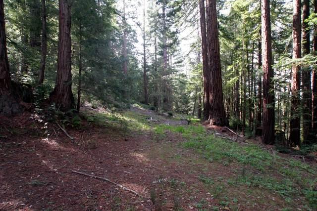 0 Native Sons, Woodside, CA 94062 (#ML81839238) :: The Goss Real Estate Group, Keller Williams Bay Area Estates