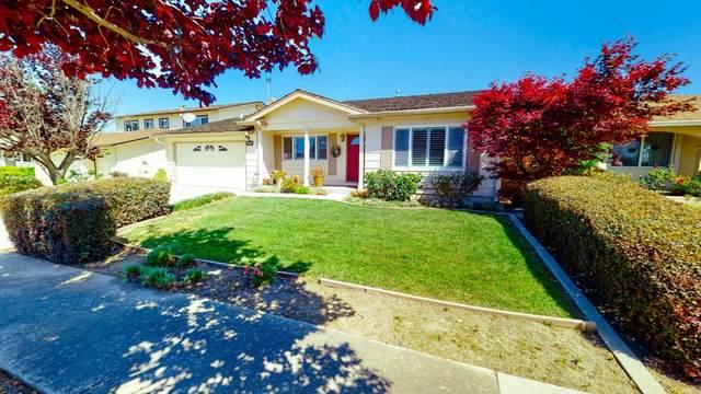 2875 Helmsley Dr, San Jose, CA 95132 (#ML81841351) :: Schneider Estates