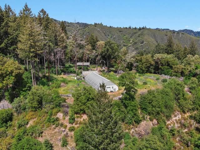215 Skyview Rd, Boulder Creek, CA 95006 (#ML81842107) :: Olga Golovko