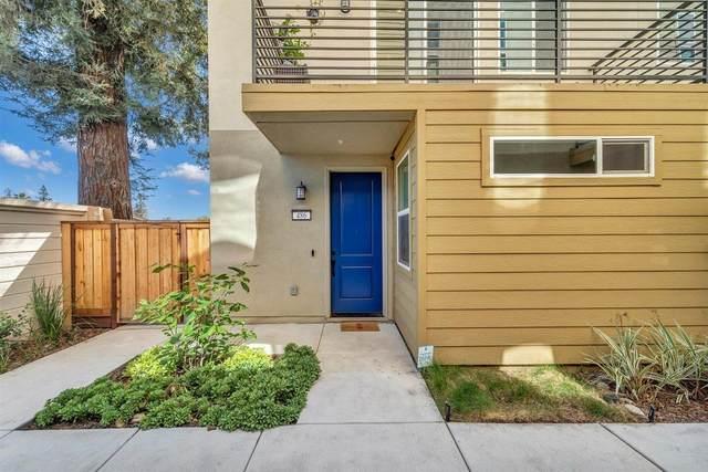 486 Tintin Ct, San Jose, CA 95133 (#ML81842391) :: Schneider Estates