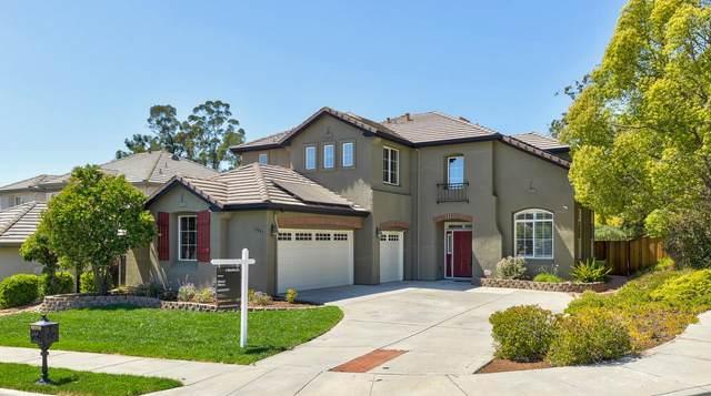 3603 Cour Du Vin, San Jose, CA 95148 (#ML81847241) :: Real Estate Experts
