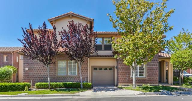 1385 Trailside Ct, San Jose, CA 95138 (#ML81848413) :: Real Estate Experts