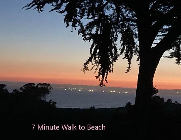 163 Crest Dr, La Selva Beach, CA 95076 (#ML81849172) :: RE/MAX Gold