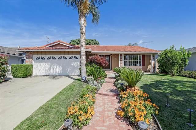 3091 Chippenham Dr, San Jose, CA 95132 (#ML81849276) :: Paymon Real Estate Group