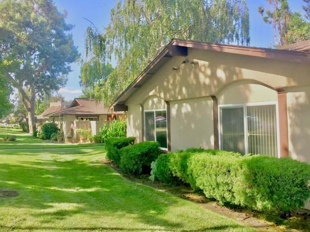 1953 Messina Dr, San Jose, CA 95132 (#ML81855733) :: RE/MAX Gold