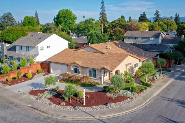 1790 Mount Vernon Dr, San Jose, CA 95125 (#ML81856098) :: Live Play Silicon Valley