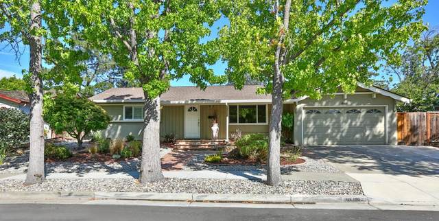 10420 Pineville Ave, Cupertino, CA 95014 (#ML81856536) :: The Gilmartin Group