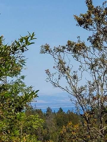 106 Gleason Way, Santa Cruz, CA 95060 (#ML81859086) :: The Sean Cooper Real Estate Group