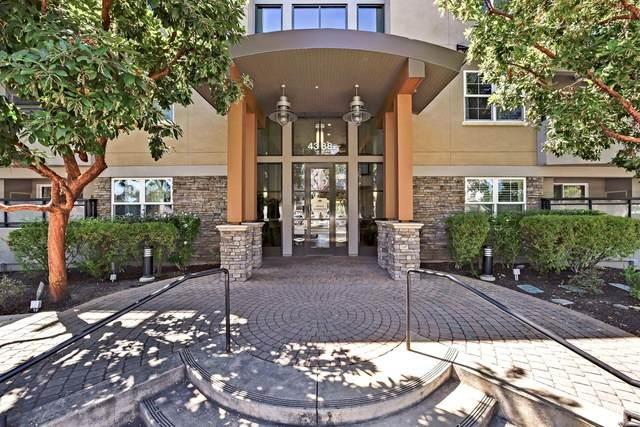 4388 El Camino Real 378, Los Altos, CA 94022 (#ML81862235) :: Real Estate Experts