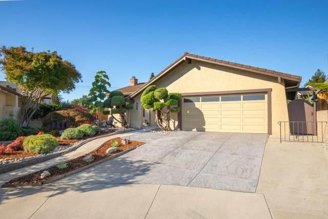 235 Suburbia Ave, Santa Cruz, CA 95062 (#ML81862722) :: Strock Real Estate