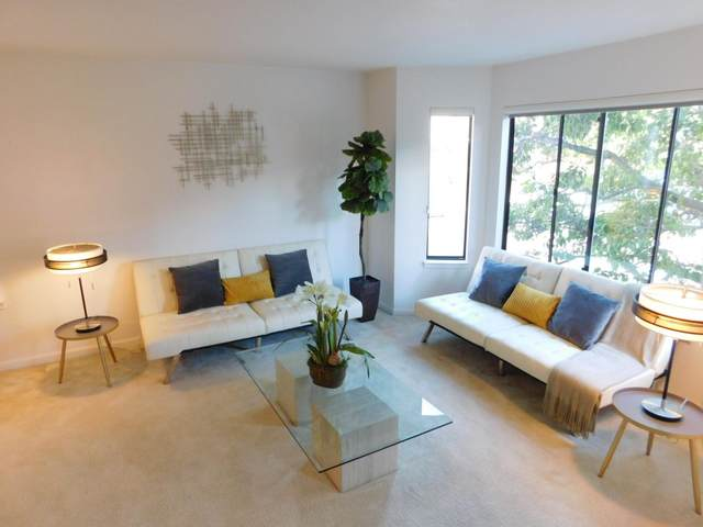 141 Rosa Flora Cir, South San Francisco, CA 94080 (#ML81863356) :: Strock Real Estate