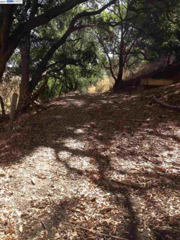 0 Mill Creek Rd, Fremont, CA 94539 (#BE40792580) :: The Dale Warfel Real Estate Network